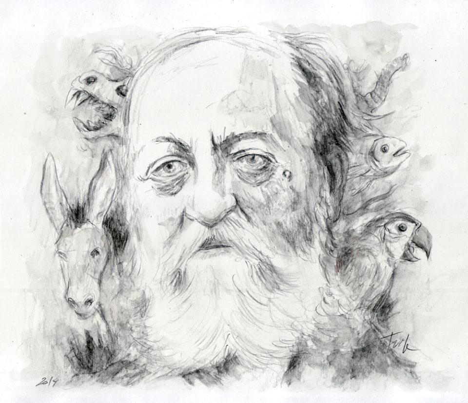 Retrato de Camille Saint-Saëns